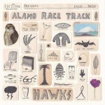 Alamo-Race-Track-Hawks-300x300